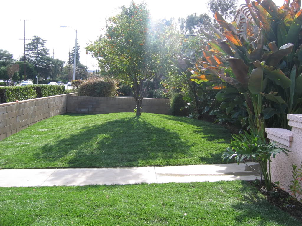 Affordable Landscape West Hills Landscaping