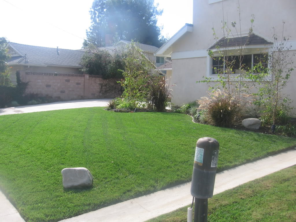 affordable landscape san fernando valley